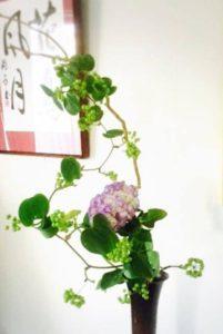 歳時記いけばな 〜紫陽花をいける〜 @ 美命の会所